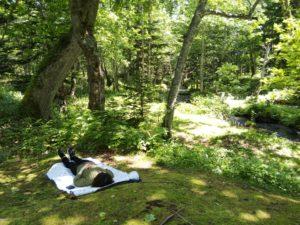 ノンノの森森林セラピーガイドツアー