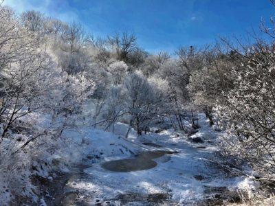 霧氷.(阿寒湖観光協会)jpg
